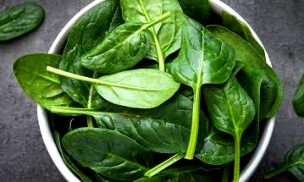 New Ways to Eat Carbon Dioxide, Possibility of Spinach